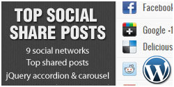 WordPress Top Social Share Posts